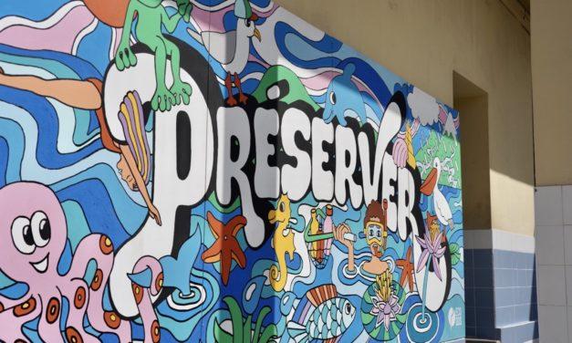 Une fresque au collège Roustan